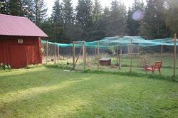 Hönsgården