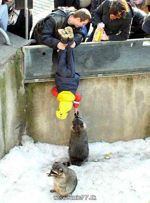 http://4.bp.blogspot.com/_-x7gqq9QJuA/TH4E9UBajgI/AAAAAAAAQ84/bsqVeolEhnc/s1600/animals_vs_humans_34.jpg