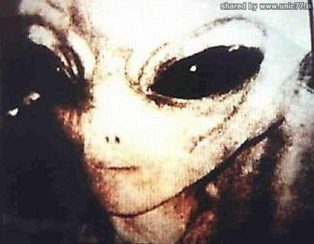 http://4.bp.blogspot.com/_-x7gqq9QJuA/TIM6-dM1RRI/AAAAAAAASss/cF6G9H1nwSY/s1600/real_alien_05.jpg