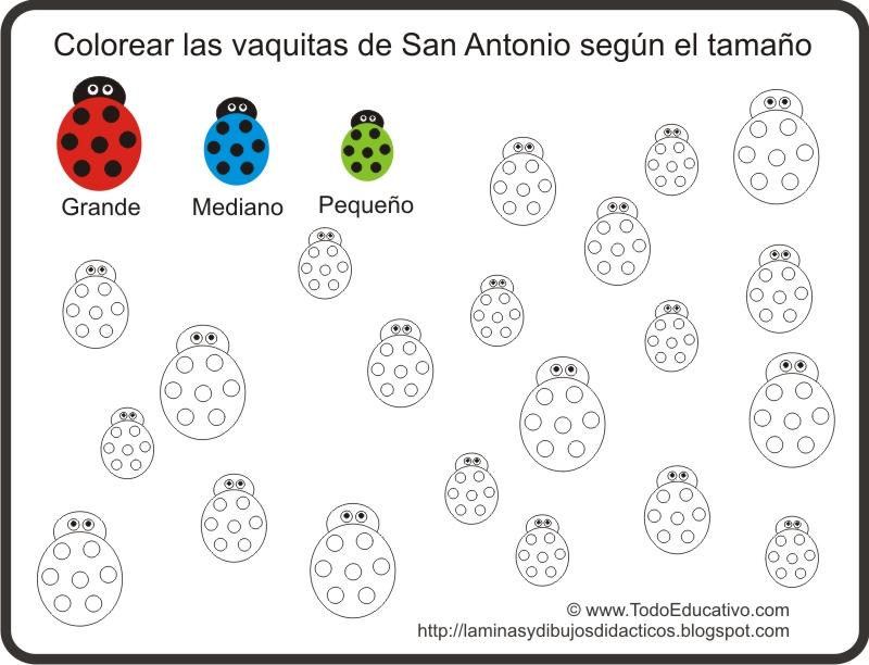 ... Didáctica para colorear según el tamaño Vaquitas de San Antonio