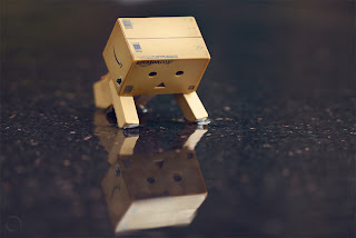 Wallpaper Danbo Unik