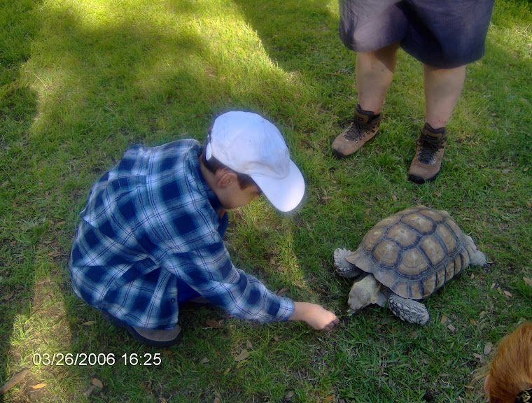"Dustin ""Touches"" a REAL turtle!"