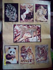 Katalog Exotic Africa 4