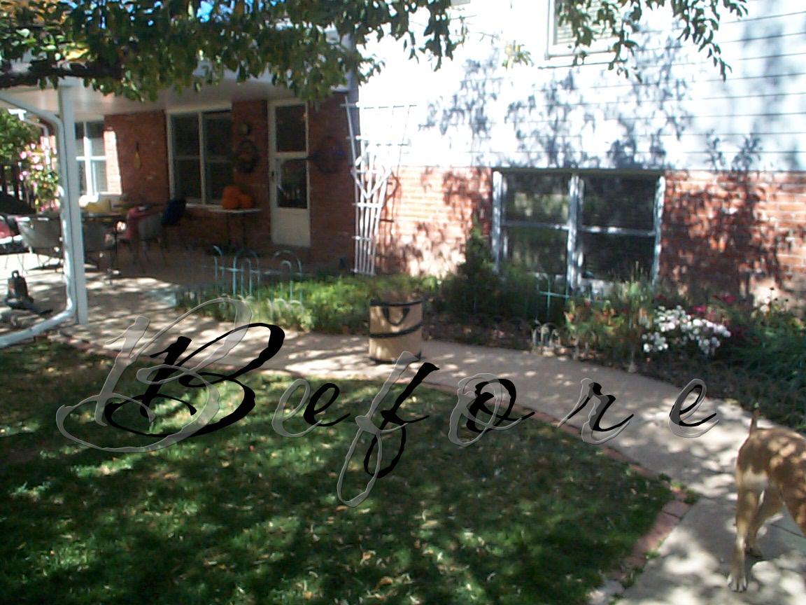 Best Backyard Pool For Dogs : Backyard Landscaping Ideas For Dogs  Small Backyard Landscaping Ideas