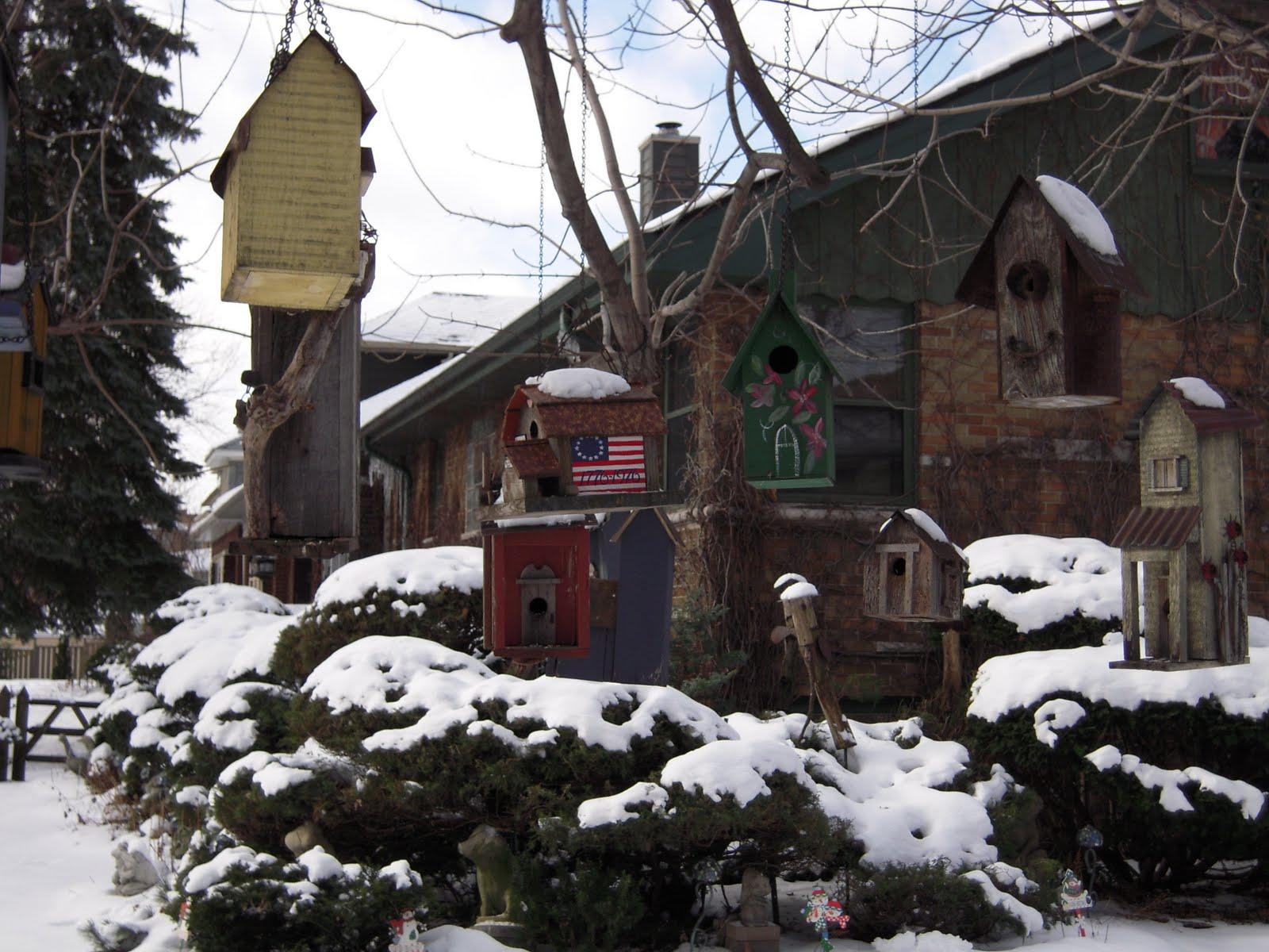 [birdhouses]