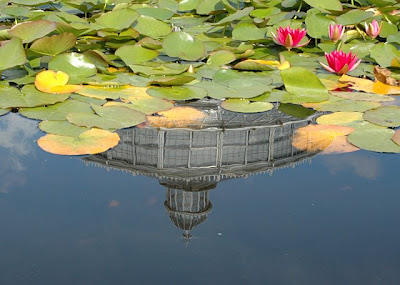 Greenhouse reflected in the water lilly pool