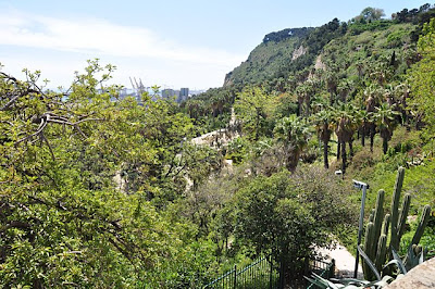 Panoramic view of Jardins de Mossèn Costa i Llobera