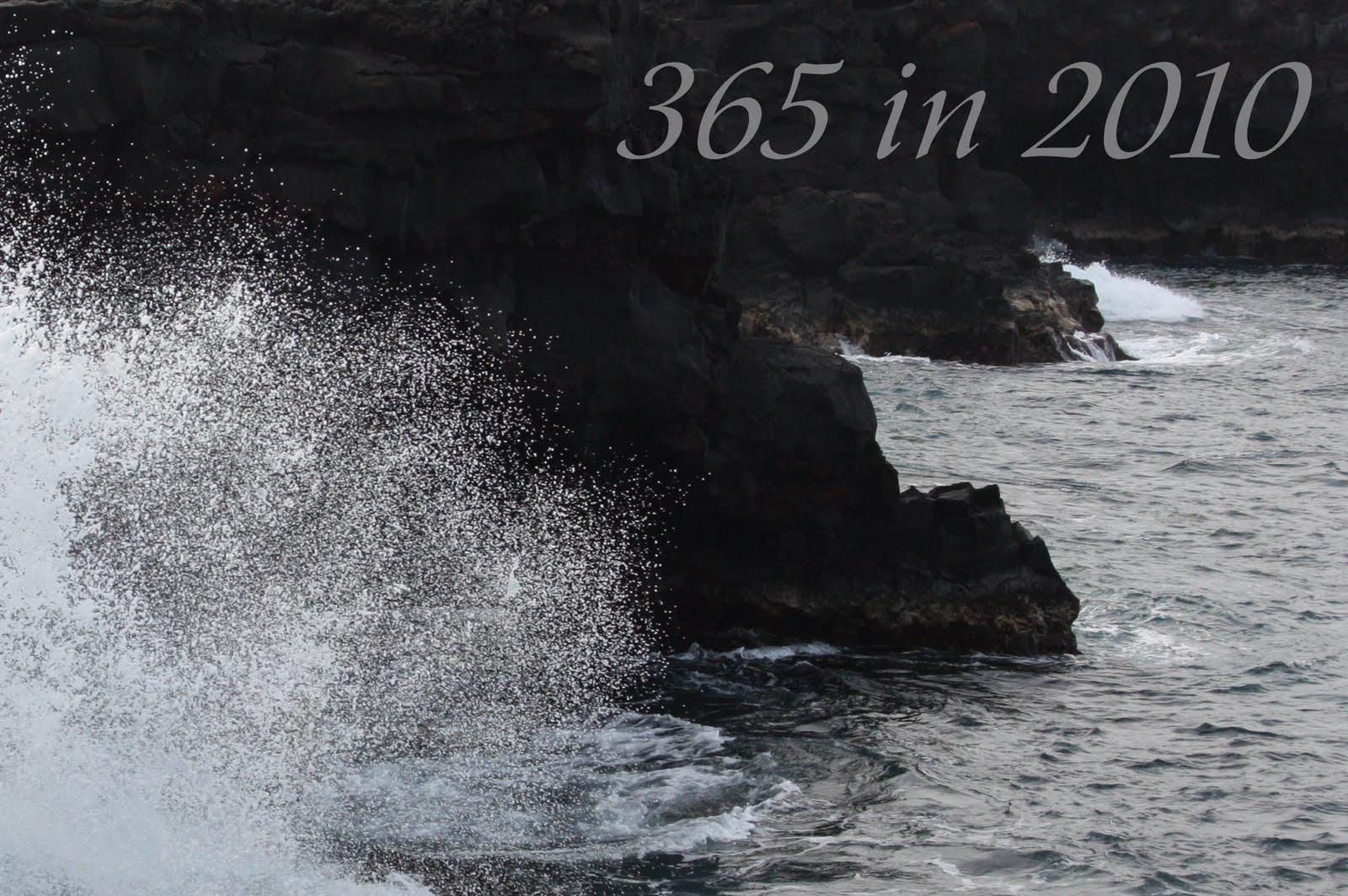 365 in 2010
