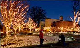 this is the 24th season for the lights before christmas which features over one million lights and more than 200 lights animal images - Toledo Zoo Lights Before Christmas