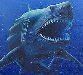 La cruzada de la Horda Oscura Tiburon+gigante