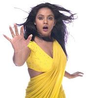 Actress in blouse hot saree still 02