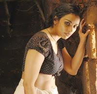 Actress in blouse hot saree still 06