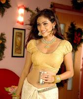 Actress in blouse hot saree still 11