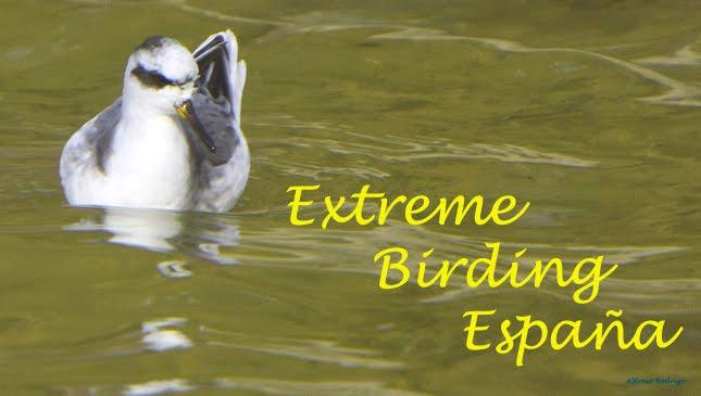 EXTREME BIRDING ESPAÑA