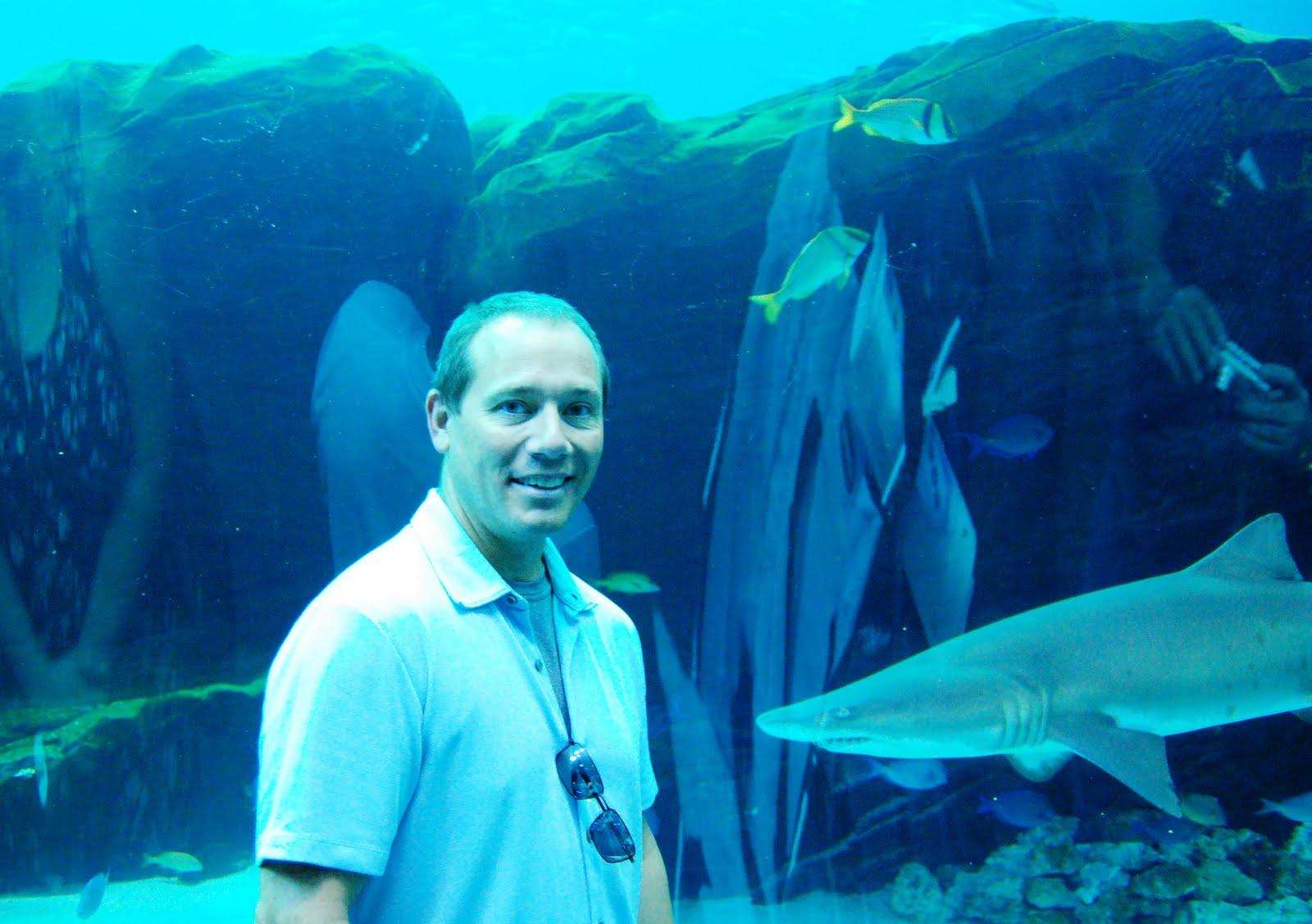 The Asheville Foodie Georgia Aquarium Atlanta Georgia