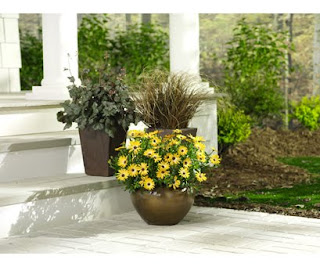 Outdoor Fall Planter Ideas http://gardenplanterstore.blogspot.com/2009/08/fall-container-plant-ideas.html