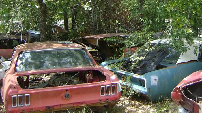 Mustang Texas Junkyard on Ford Mustang Salvage Yards Texas