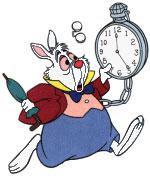 coelho alice relógio