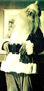 Joe Higgins as Santa Claus
