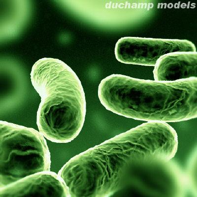 Imagenes+de+microorganismos+patogenos