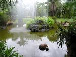 Relação entre avaliação e um jardim