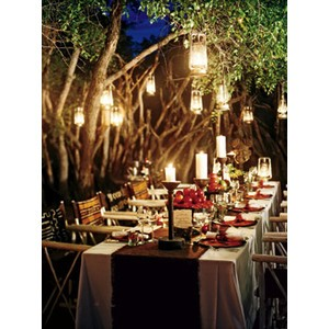 The Fine Living Muse : Enchanted Forest Wedding and Party Ideas