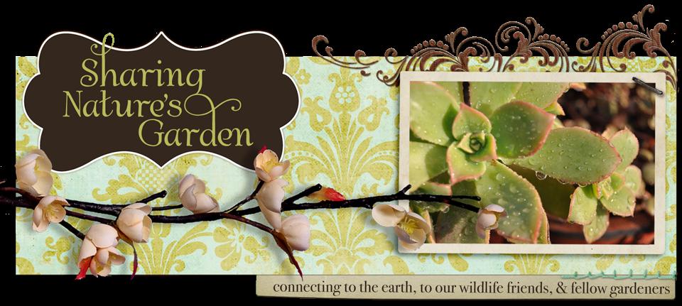 Sharing Nature's Garden