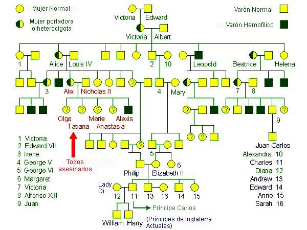 TAREA-18: HEMOFILIA Y CASAS REALES