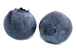 [2-blueberries.jpg]