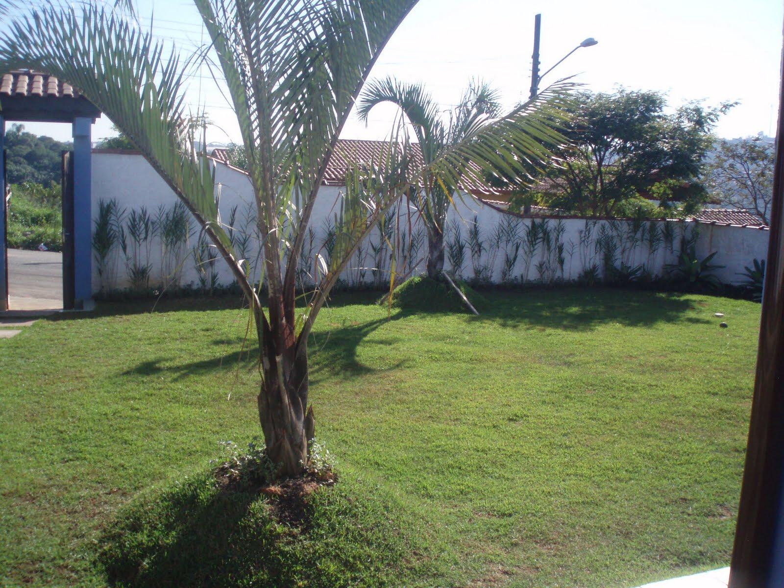 cerca de jardim barata : cerca de jardim barata:Riviera Green Garden: Jardins ,cerca viva,vasos decorados