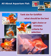 All About Aquarium Fish Magazine June 2010 Issue
