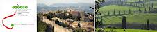Centre Franco Italien - Nice
