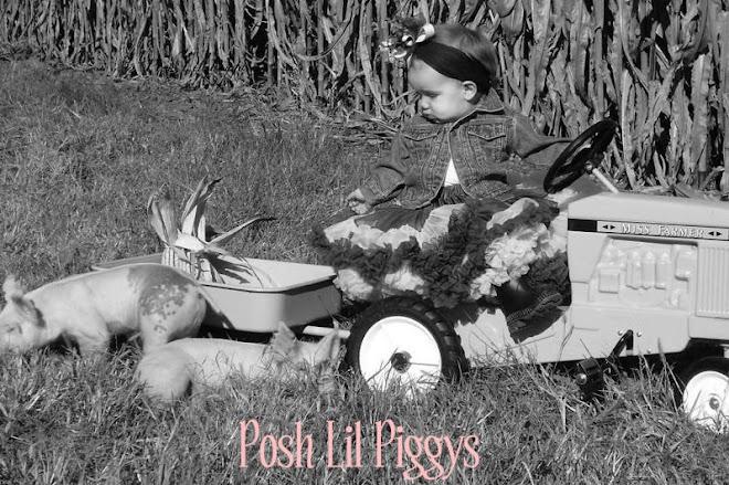 posh lil piggys