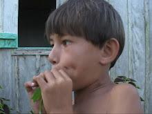 menino da ilha