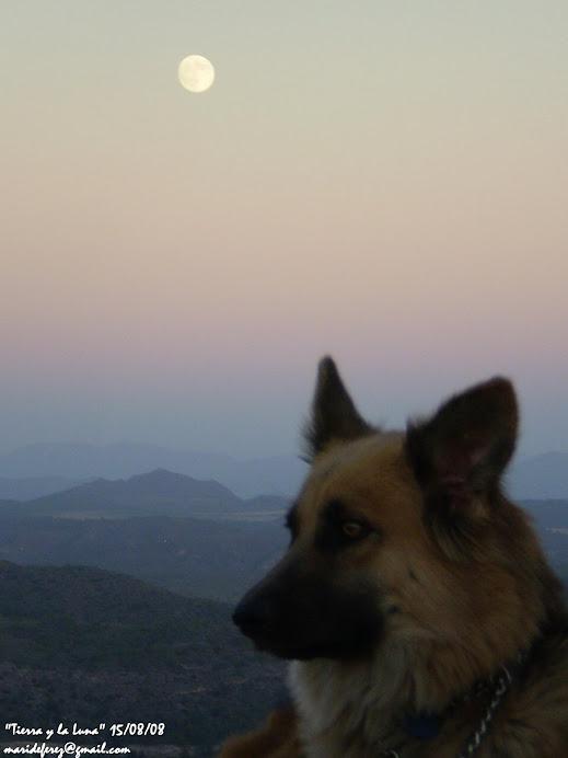 Quiero compartir esta luna con vosotr@s... sin palabras