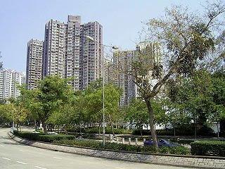 寶鄉街公屋規模比區內最細的運頭塘邨還要小,筆者認為算是可以接受的水平。
