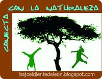 conecta a los niños con la naturaleza
