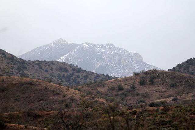 Atascosa View