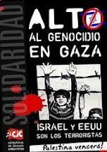 CRIMINALES SOLDADOS ISRAELIES MATAN A SOLDADO PALESTINO DE LA ONU