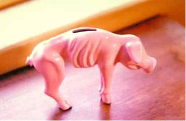 [piggy+bank]