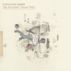 Frightened Rabbit - The Midnight Organ Fight (album cover)