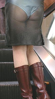japanese see-through skirt