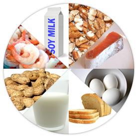 Alergi dan Intoleransi Makanan