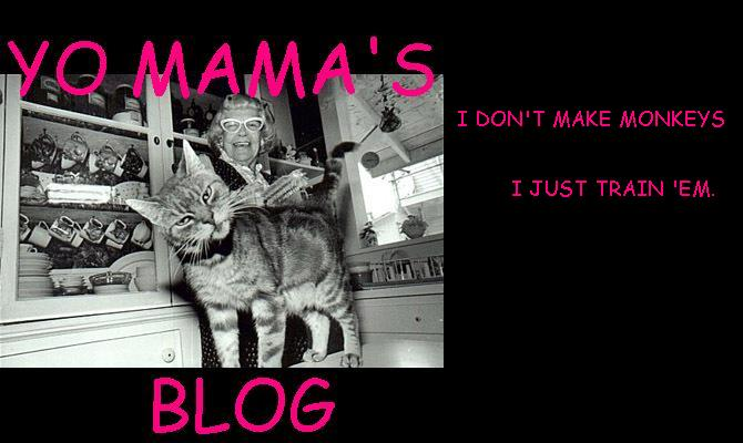 Yo Mama&#39;s Blog
