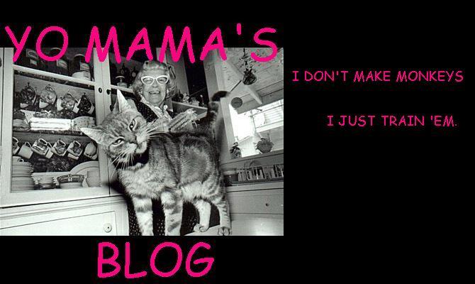 Yo Mama's Blog
