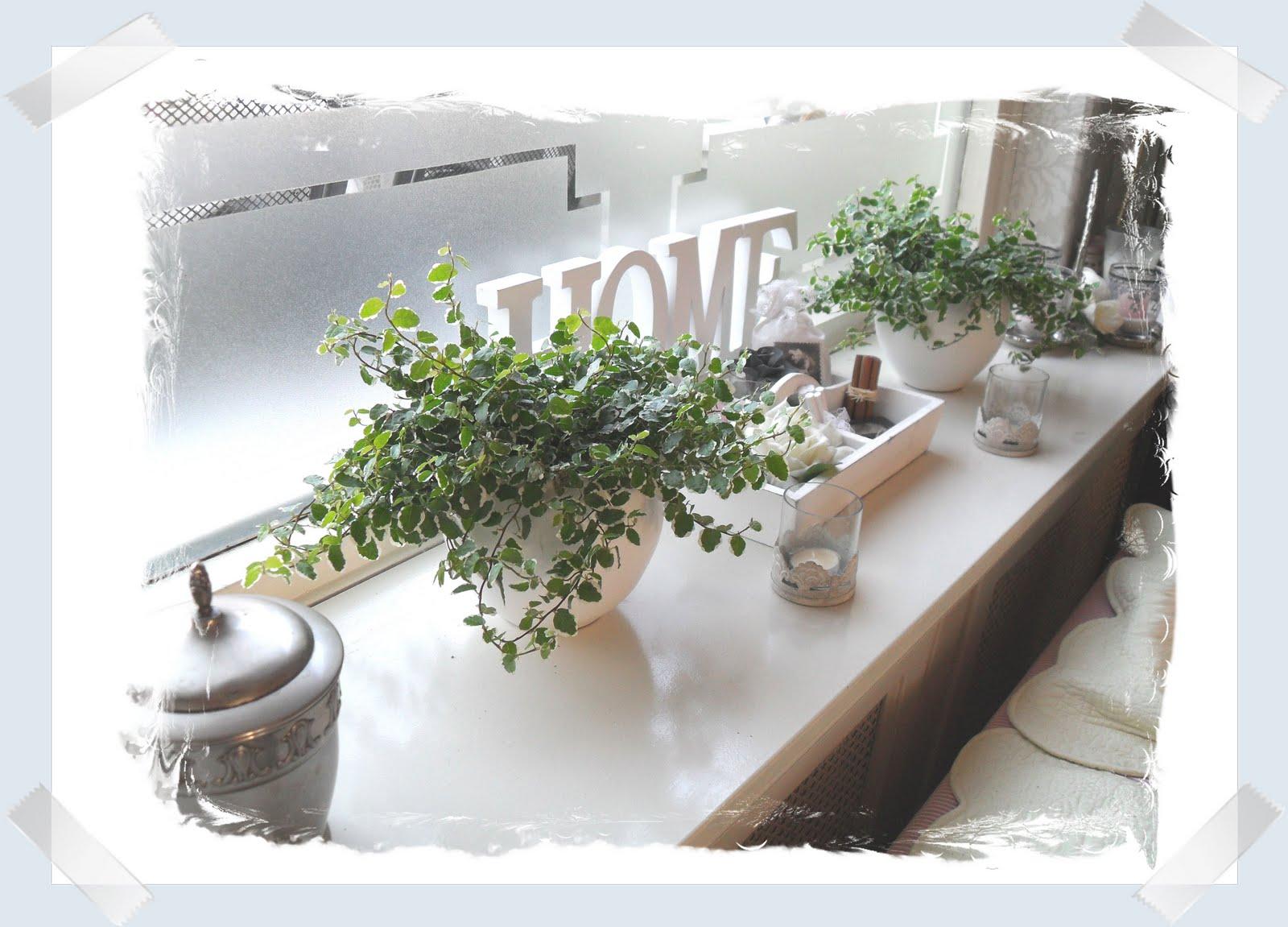 Decoratie Planten Woonkamer : Decoratie vensterbank woonkamer rh belbin