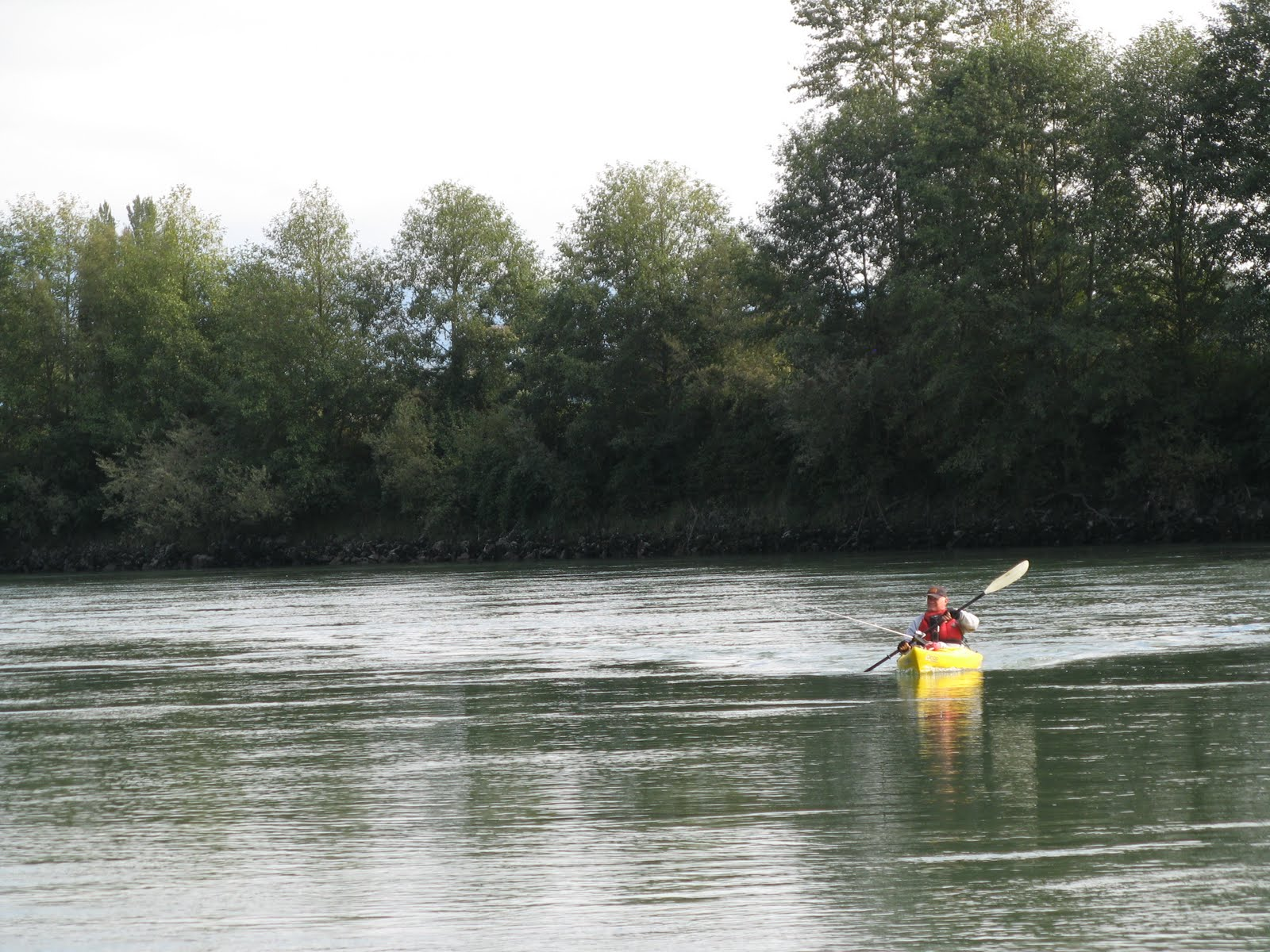 Powell river books blog paddling for salmon for Wash state fishing reports
