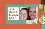 Help Blake and Amanda Adopt