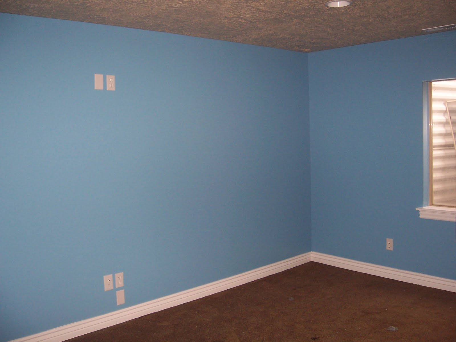 What Color Walls Go Good With Blue Carpet Carpet Vidalondon: what color goes good with blue