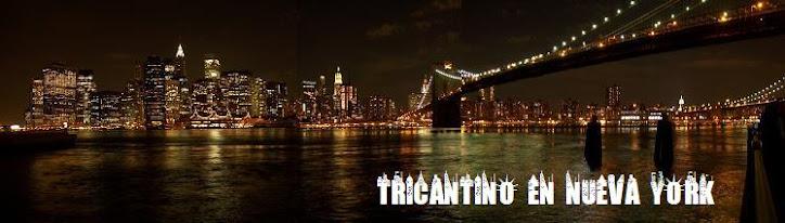Tricantino en Nueva York